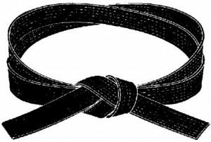 Téléchargement Ceinture noire self défense training Hangenbieten